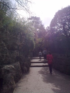 the-climb4